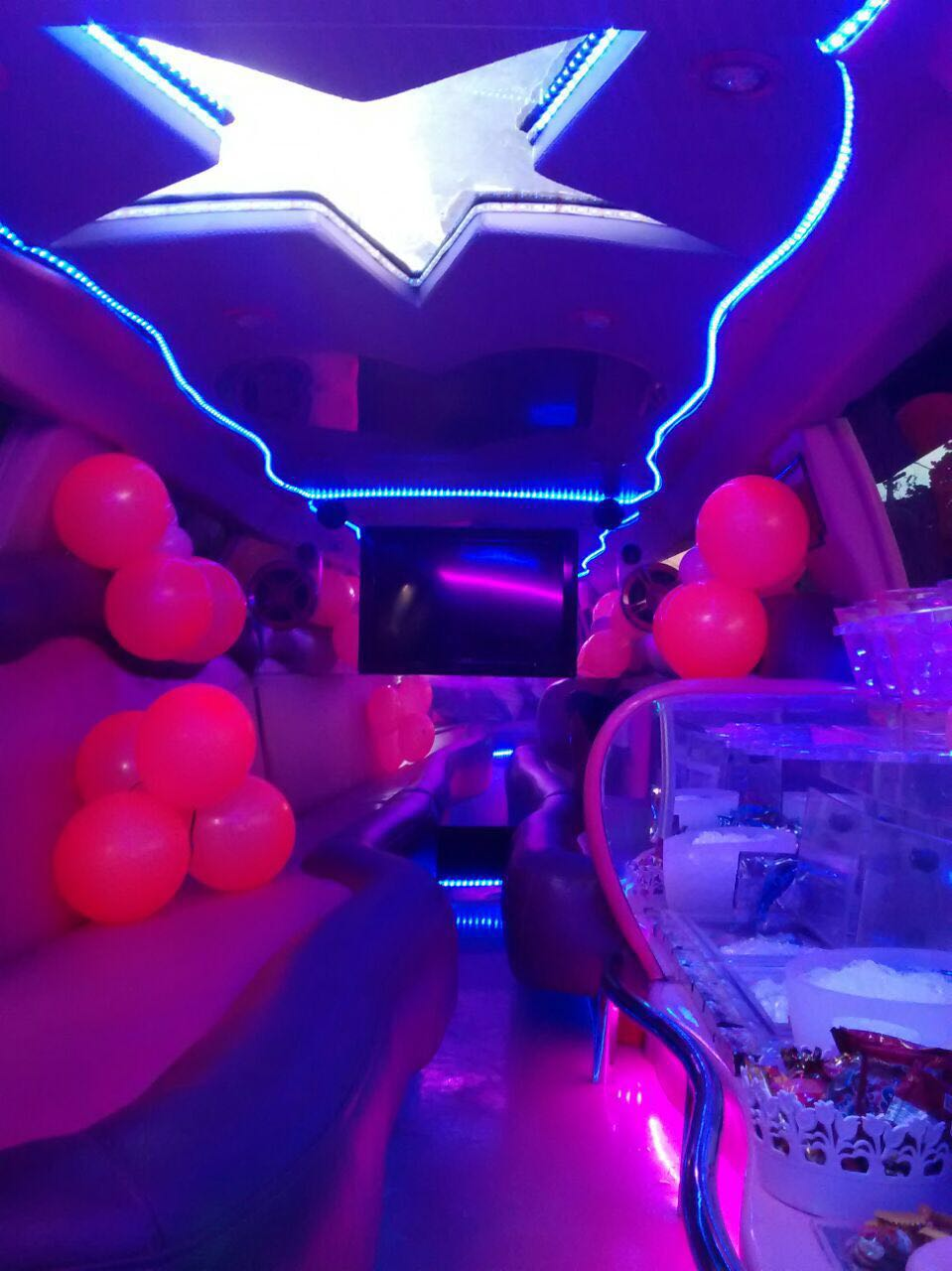 limo-fantasy24