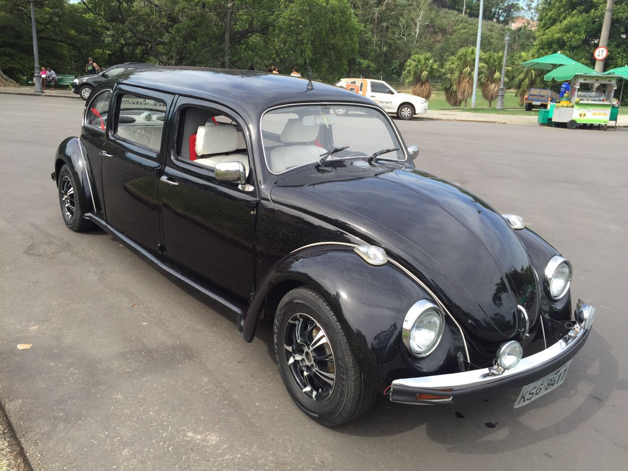 limo-fusca11